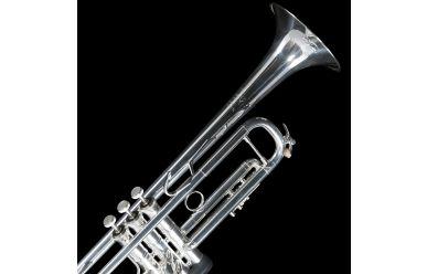 Bach LR180-25SL Stradivarius