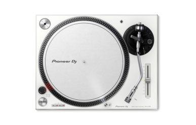 Pioneer PLX 500-W