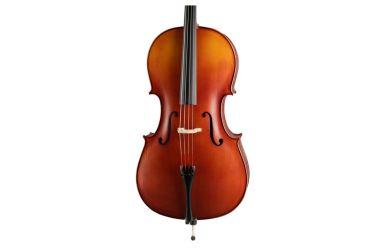 Höfner H5-C-0 Celloset
